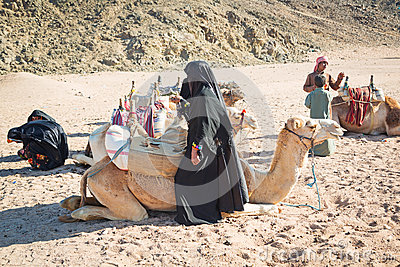 Bedouin people with camels resting on desert in Egypt Editorial Photography