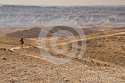 Bedouin tribesman Editorial Photo
