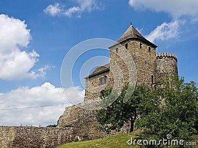 The Bedzin castle