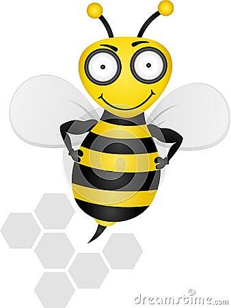 Free Bee Stock Image - 9971031