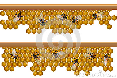 Bee hive pattern
