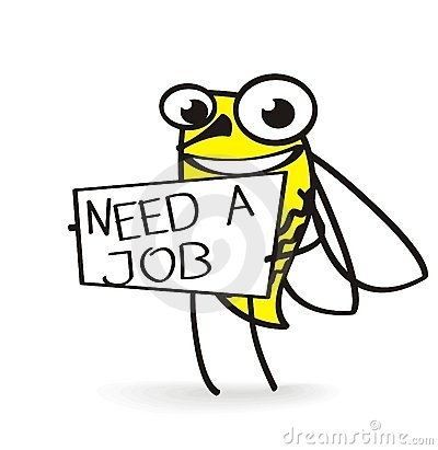 Bee holding a need job sign