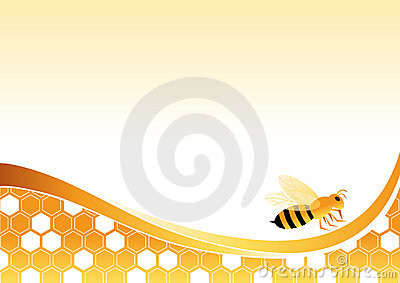 Bee on Honey Cells