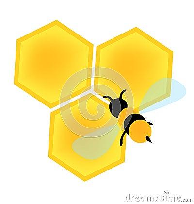 Bee on honey cells vector