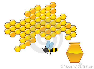 Bee and honeycombs