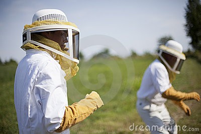 Bee Keepers Stock Photo