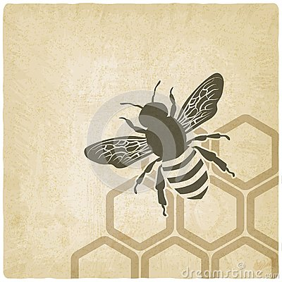 Bee old background
