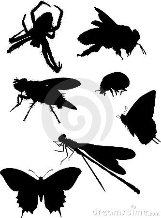 Bee and other insect silhouettes