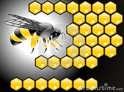 Bee poster vector