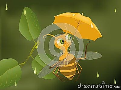 Bee and a rain