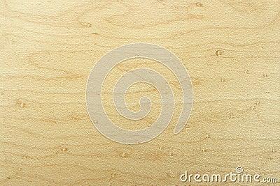 Beech wood texture