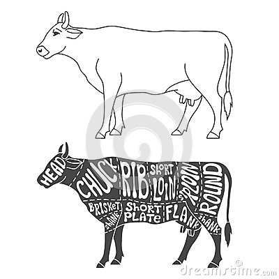 Ewrazphoto Beef Cuts Chart additionally Processing A Pig For Meat further Vintage Outline Diagram Meal Cutting Of 26337858 likewise What Part Of A Cow Chart besides Cutsofbeef 12097. on cuts of beef chart