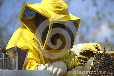 Beekeeper With Honeycomb