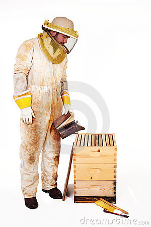 Beekeeper Smoking A Hive