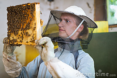 Beekeeper working in an apiary