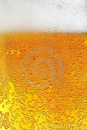 Free Beer Stock Photography - 4255902