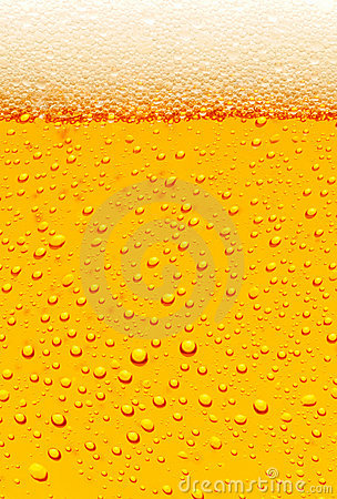 Free Beer Royalty Free Stock Photo - 5525705