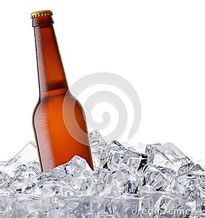 Free Beer Bottle Stock Image - 54149961