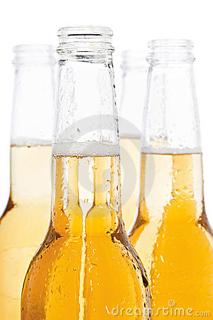 Beer bottles isolated