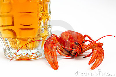 Beer and crayfish