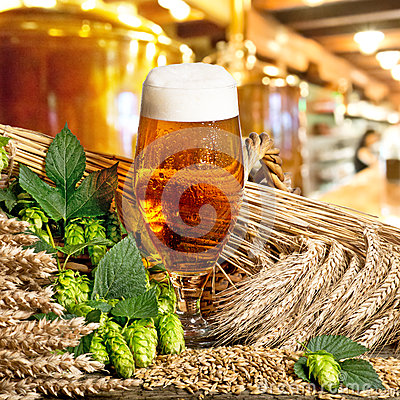 Free Beer Glass Stock Photo - 37854350