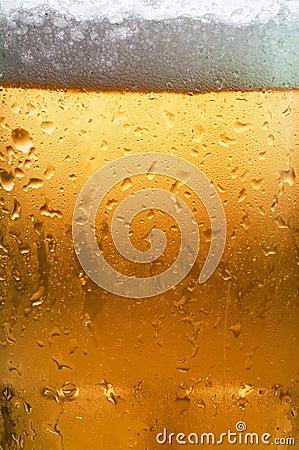 Free Beer Macro Royalty Free Stock Photos - 8174028