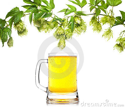 Beer mug with hop