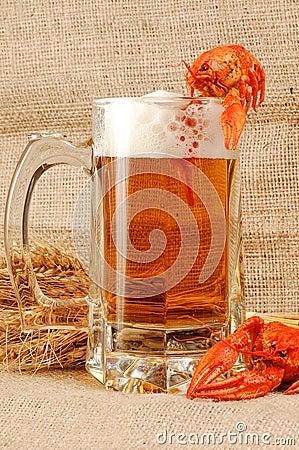 Free Beer Naturmort Royalty Free Stock Photography - 3193527