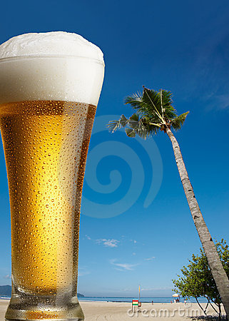 Free Beer On Beach Royalty Free Stock Photo - 8181765