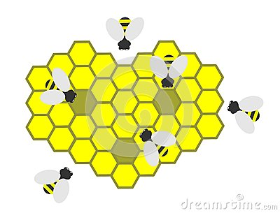 Bees and bee honeycombs