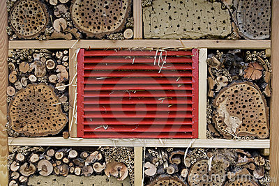Bees-house