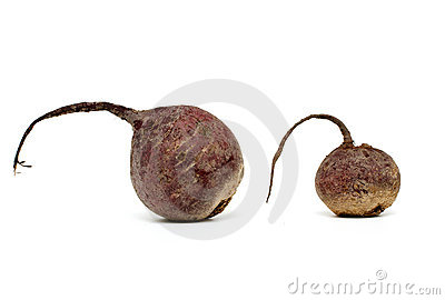 Beet-root