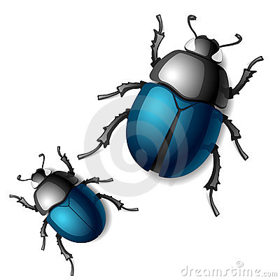 Free Beetle Royalty Free Stock Images - 20964019