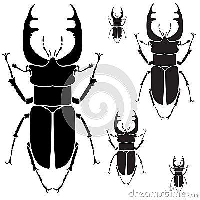 Free Beetles. Stock Photo - 59506290