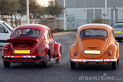 Beetles volkswagen