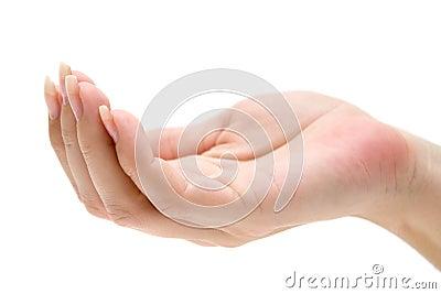 Begging Hand
