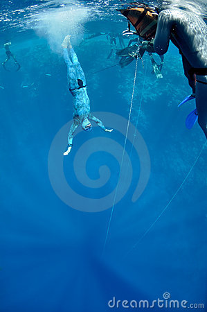 In the beggining of the dive