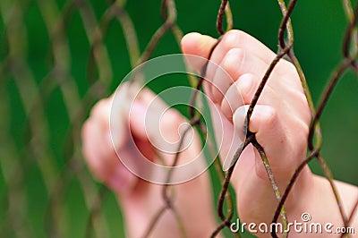 Behind Fence I