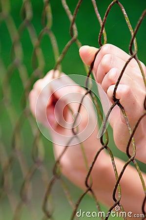 Behind Fence II