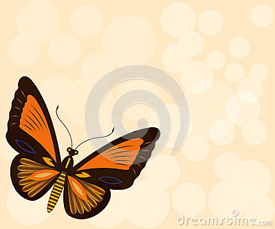 Beige background with butterfly