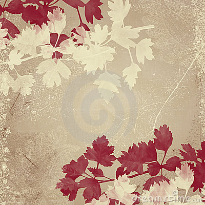 Beige background with leaves