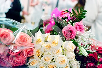 Beige and pink roses