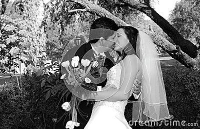 Beijo encantador do casamento