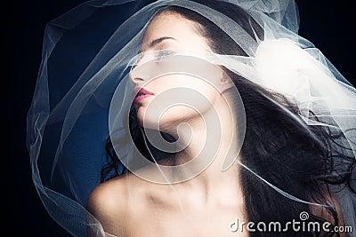 Beleza sob o véu