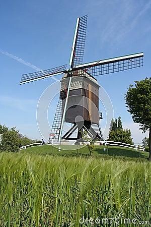 Belgian windmill