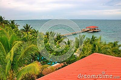 Belize Coast