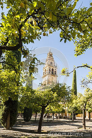 Free Bell Tower Of The Mezquita Cathedral, Cordoba, Spain Stock Photos - 81344203