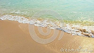 Bella spiaggia tropicale dell'aria che trascura le onde del mare, scontrantesi con le spiagge vuote dal lato stock footage