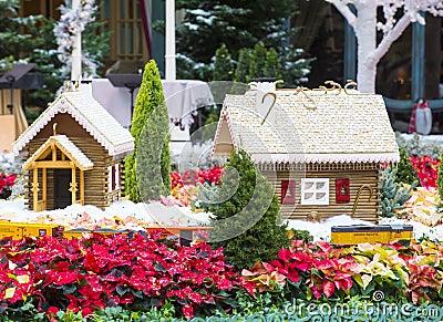 Bellagio Hotel Conservatory & Botanical Gardens Editorial Image