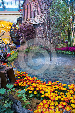 Bellagio Hotel Conservatory & Botanical Gardens Editorial Photography